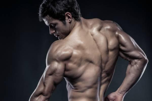 How Do Muscles Grow - muskultura.mk