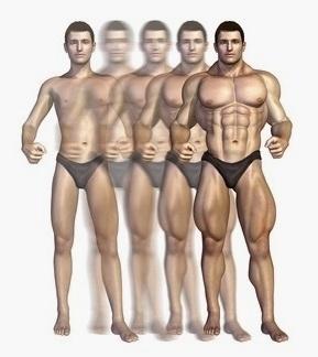 Целосно закрепнување = мускулен раст
