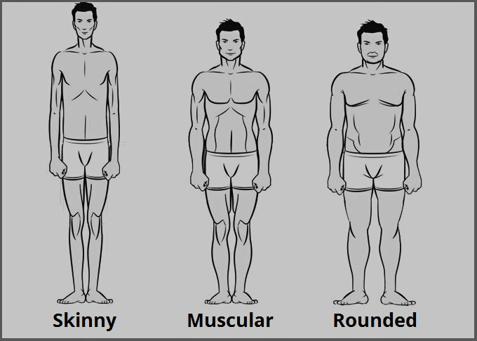 Weight training - Body types - muskultura.mk | Image by Granito diaz [CC BY-SA 4.0 (https://creativecommons.org/licenses/by-sa/4.0)], from Wikimedia Commons