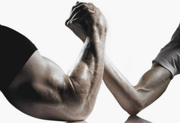 How Do Muscles Grow?