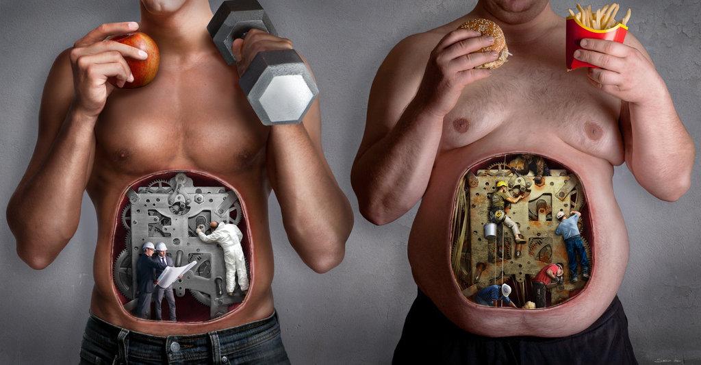 Fat Loss - Burning fat vs Burning carbohydrates