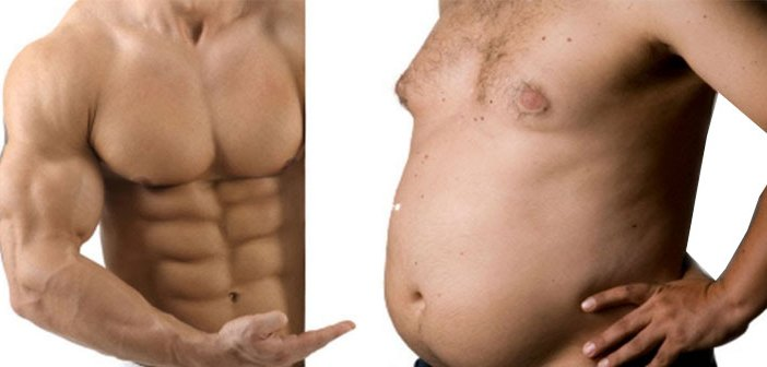 Fat Loss - Muscle vs Fat - muskultura.mk