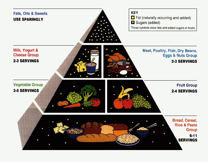 Food pyramid - low-fat-high-carb indoctrination