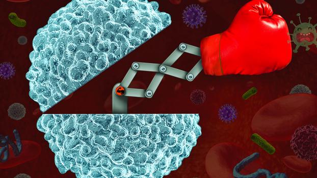 Imunoloshki sistem